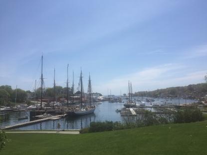 Camden harbour