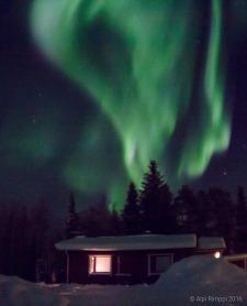 Nightly lights ©Alpi