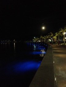 Cairns has a nice walk path by the ocean