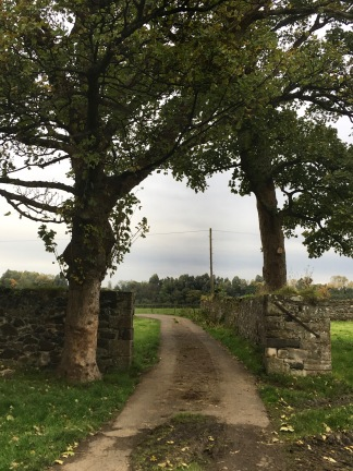 You can explore the surroundings of the abbey
