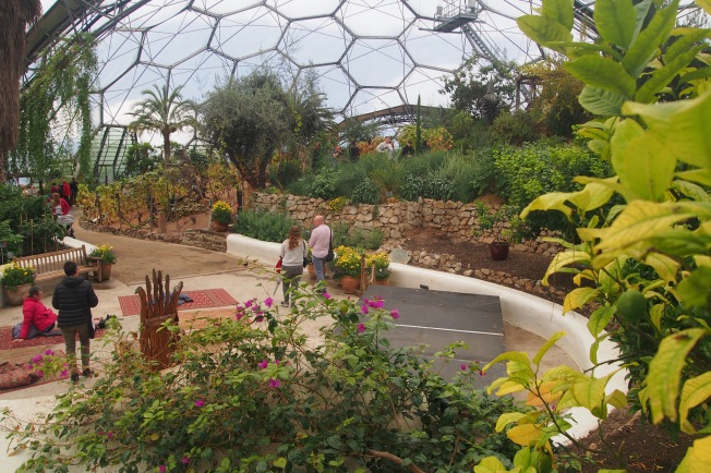 The Mediterranean biome is dry and cool in the autumn