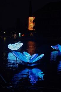 Butterfly Effect by Masamichi Shimada