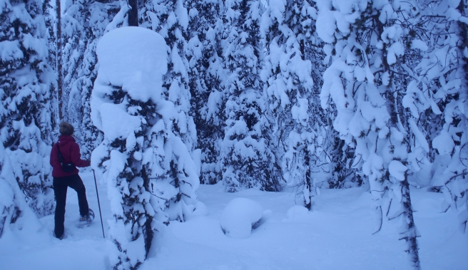 Nearherewayaway snowshoeing 3