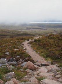 Path to Fingers Ridge