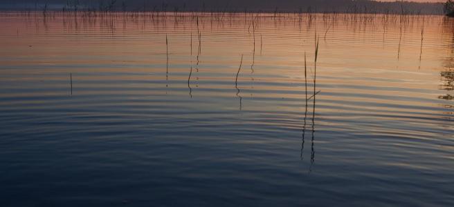 Summer night at a lake