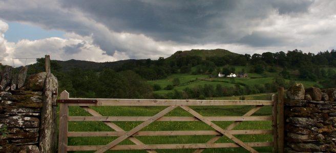 Lake District fields